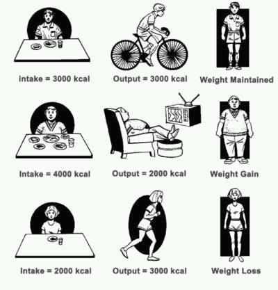 Calories to reach weight loss goal
