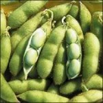 Soybeans-150x150